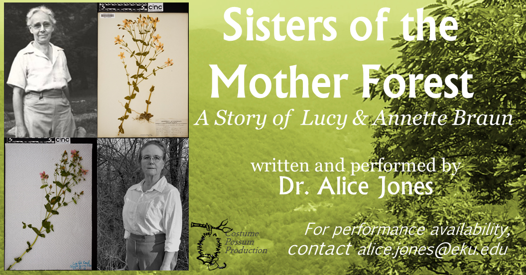 Sisters of the Mother Forest